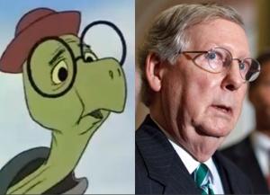 toby-turtle